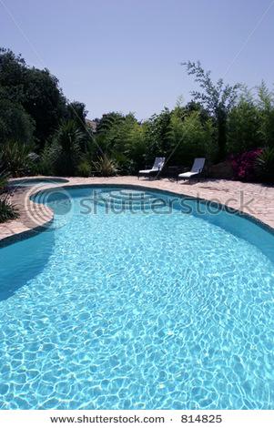 Stock Photo Big Sunny Kidney Shaped Swimming Pool Of Luxury Villa In Spain 814825 Ez Pool